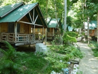 Accommodation In Ao Ton Sai Near Krabi Thailand