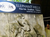 Elephant Hills Tented Camp - Accommodation