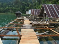 Klong Ya Klong Saeng Raft House - Accommodation